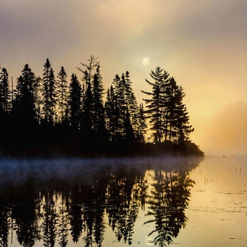BRONZE LCC Steve Donnelly - Misty Morn In Algonquin