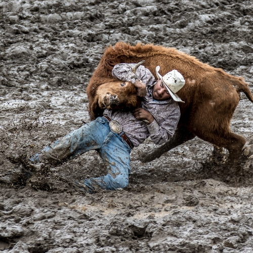 2nd Merit - British Columbia - Tony Roberts - Steer Wrestler