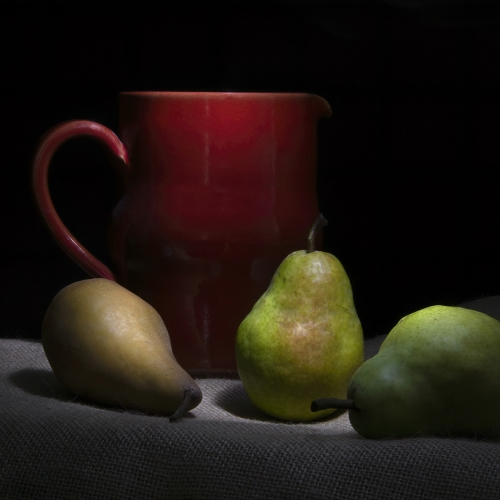 Gold Medal - Evelyn Young - Still Life With Red Jug