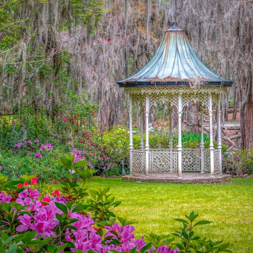 Gold Medal - Kathryn Martion - Magnolia Plantation Gazebo