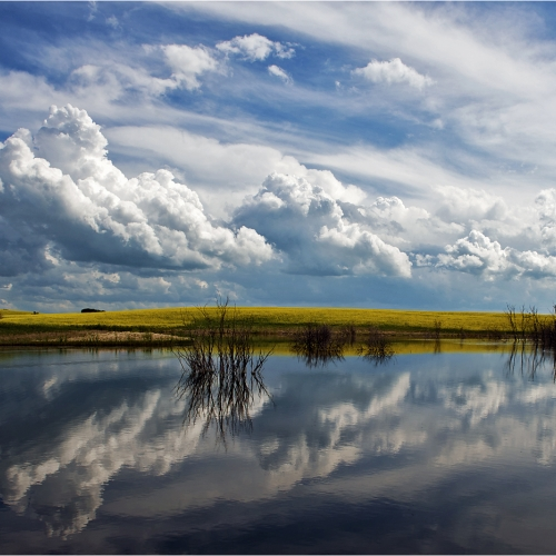 Honour Award - Terry Graham - Reflection Of Clouds