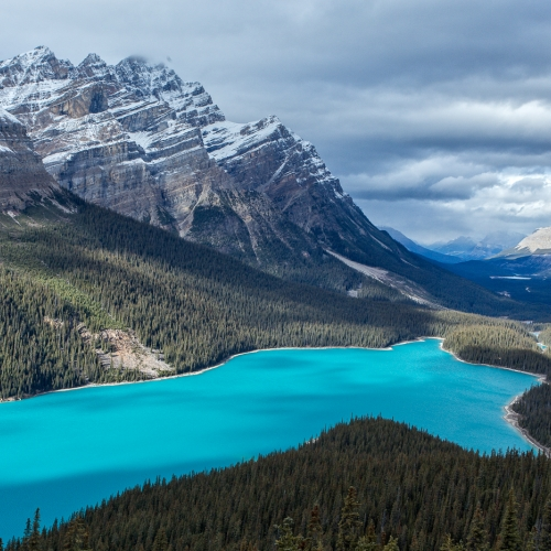 Honour - Rachel Schneiderman - Peyto Lake
