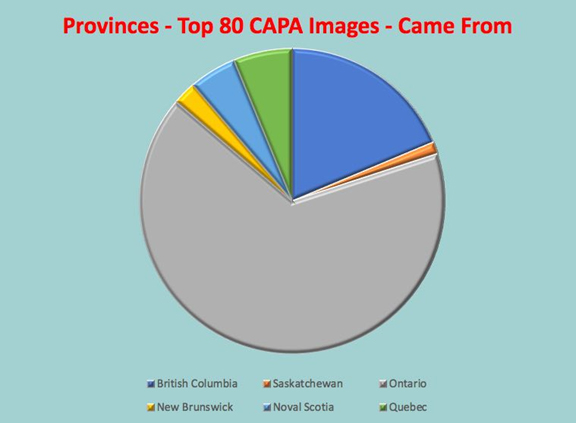 Pie Chart of CAPA images for 4-nation competitions